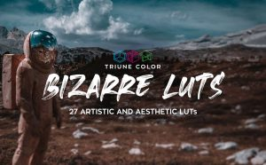 Triune Digital - Bizarre LUTs 6